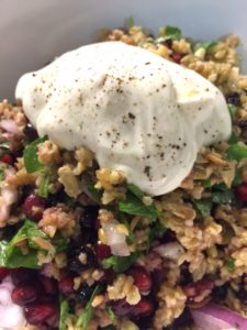 Freekeh in a SCI diet